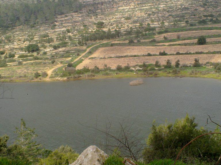אגם בית זית