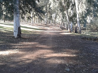 גן לאומי ירקון