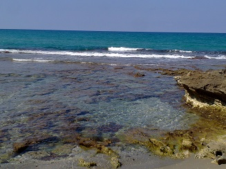 מחוף הבונים לחוף דור