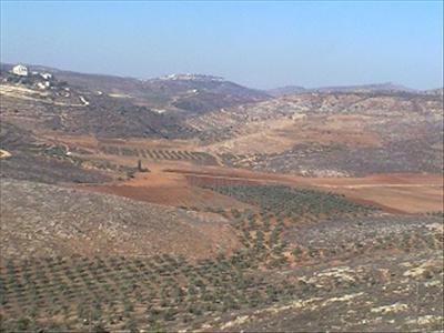 מצפה יוסף
