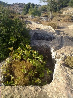 מתל אפק למאוזוליאום מזור על שביל ישראל