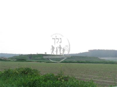 גבעת הרקפות ליד טל שחר
