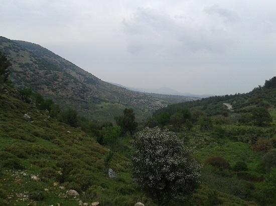 קבר רבי יונתן בן עוזיאל
