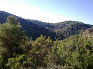 הר כרמילה