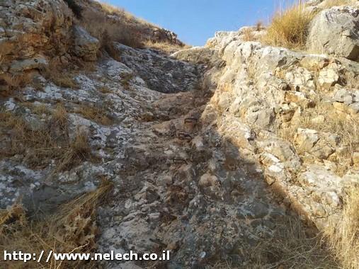 ממצפה שמיר לבית שאן שביל עמק המעיינות