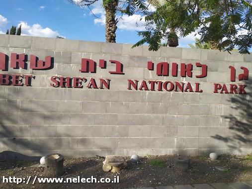 גן לאומי בית שאן
